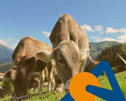 Agrigán, una historia de bioseguridad