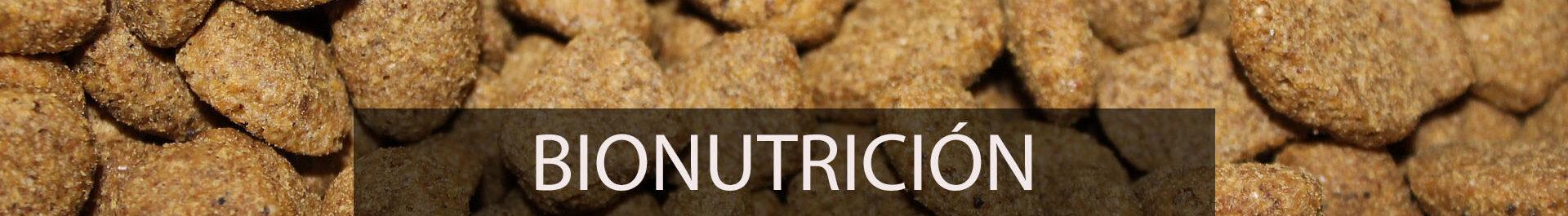 Bionutrición, la estrategia de Agrigán para producir carne de manera eficiente