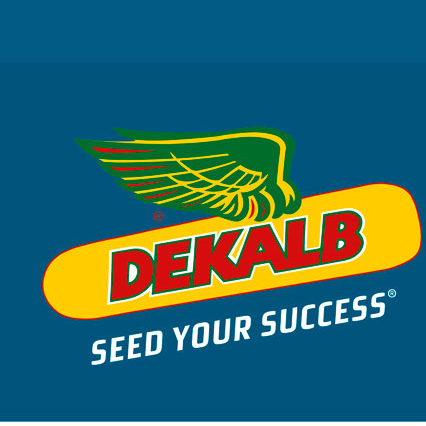 Alcanza el máximo potencial  con las semillas de maíz Dekalb